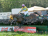 It may not be pretty jumping, but Flight Move and Richard Boucher left the rest of the field in the dust in the Charles Bird Allowance Hurdle.