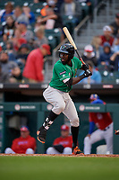 Norfolk Tides Anderson Feliz (14) bats during an International League game against the Buffalo Bisons on June 21, 2019 at Sahlen Field in Buffalo, New York.  Buffalo defeated Norfolk 1-0, the second game of a doubleheader.  (Mike Janes/Four Seam Images)