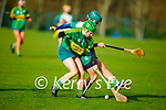Kerry's Jessica Fitzell tussles with Sophia Payne of Meath for possession, in the Camogie Intermediate Championship