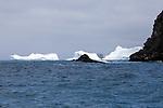 Point Wild, Elephant Island