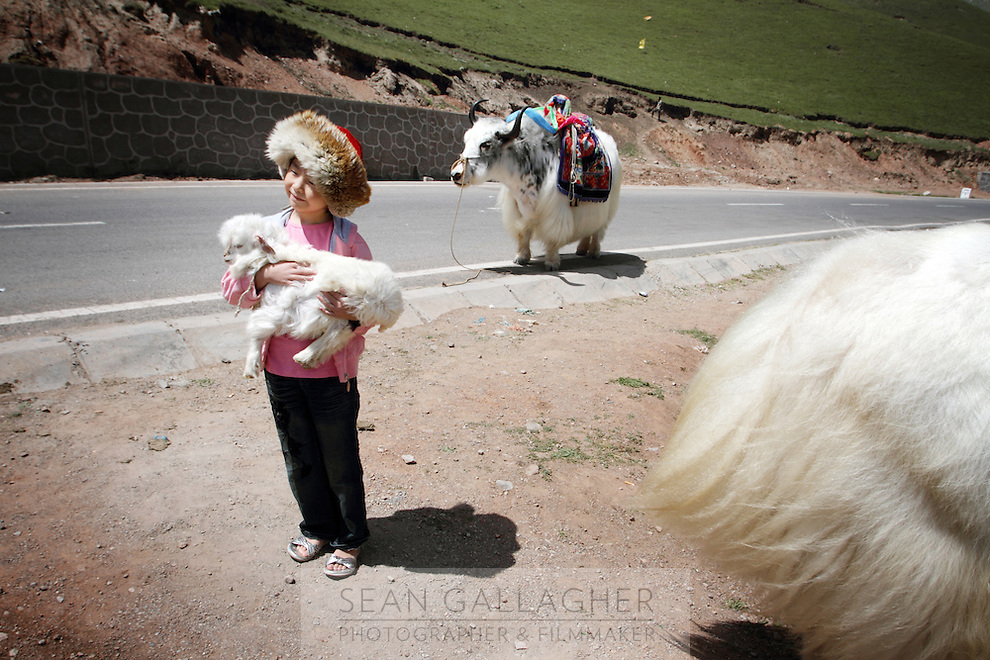 A child poses for a photograph by the side of the road on the Qinghai-Tibetan Plateau, Qinghai Province. China. 2010
