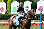 July 05, 2014: Flamboyant (FR) with Joel Rosario in of the Grade I Belmont Derby Invitational Stakes for 3-year olds, going 1 1/4 mile on the inner turf at Belmont Park. Sue Kawczynski/ESW/CSM