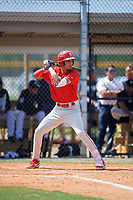 Philadelphia Phillies Juan Herrera (9) at bat during an Instructional League game against the Detroit Tigers on September 19, 2019 at Tigertown in Lakeland, Florida.  (Mike Janes/Four Seam Images)
