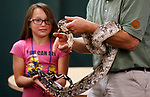 Monroe Love, 11, helps Gabe Kerschner, with Conservation Ambassadors, during a special presentation at the Boys & Girls Club of Western Nevada in Carson City, Nev., on Tuesday, June 12, 2018. Love is helping to hold Noah, a Columbian boa constrictor. <br />