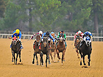Sooner Humor, ridden by Ramon Vazquez (center), leads the 4th race field to the finish Monday afternoon at Oaklawn Park in Hot Springs.