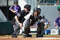Wake Forest Demon Deacons catcher Brendan Tinsman (9) sets a target as home plate umpire Jon Byrne looks on during the game against the Furman Paladins at BB&T BallPark on March 2, 2019 in Charlotte, North Carolina. The Demon Deacons defeated the Paladins 13-7. (Brian Westerholt/Four Seam Images)