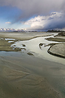Alaska's Copper River Delta is the largest wetlands complex on the Pacific coast of North America, and an ecosystem of almost unparalleled productivity, Chugach mountains, Cordova, Alaska