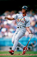 Royce Clayton of the St. Louis Cardinals participates in a Major League Baseball game at Dodger Stadium during the 1998 season in Los Angeles, California. (Larry Goren/Four Seam Images)