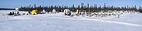 Rick Swenson pulls into the Cripple checkpoint 1/2 way into the 2010 Iditarod Sled Dog Race