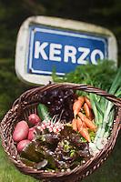 Europe/France/Bretagne/56/Morbihan/ Belle-Ile-en-Mer/Env de Sauzon/Kerzo: le panier de légumes bio d'Amandine et Baptiste Vasseur