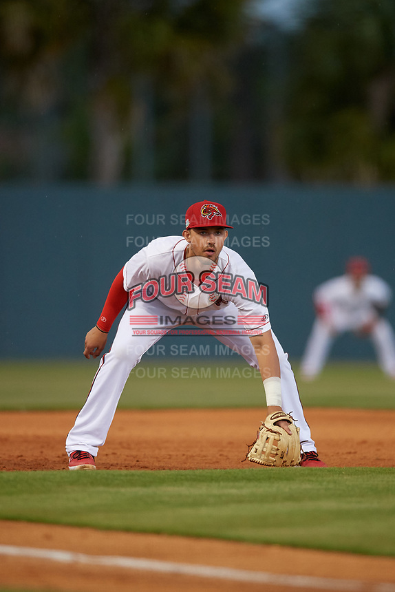 Florida Fire Frogs Drew Lugbauer (17) during a Florida State League game against the Jupiter Hammerheads on April 8, 2019 at Osceola County Stadium in Kissimmee, Florida.  Florida defeated Jupiter 7-6 in ten innings.  (Mike Janes/Four Seam Images)