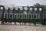 March 14, 2015: The starting gate for the Rebel stakes at Oaklawn Park in Hot Springs, AR. Justin Manning/ESW/CSM