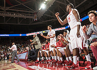 NWA Democrat-Gazette/ANTHONY REYES • @NWATONYR<br /> The Arkansas bench celebrates a made free throw against Tennessee late in the second half to put the game out of reach for the Volunteers Tuesday, Jan. 27, 2015 in Bud Walton Arena in Fayetteville. The Razorbacks won 69-64.