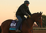 Into The Sunrise, trained by trainer Wesley A. Ward, exercises in preparation for the Breeders' Cup Juvenile Turf at Keeneland Racetrack in Lexington, Kentucky on October 31, 2020.