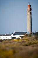 Europe/France/Bretagne/56/Morbihan/Belle-Ile/ Kervilahouen: le grand phare  édifié de 1826 à 1835 sur des plans de l'ingénieur Augustin Fresnel