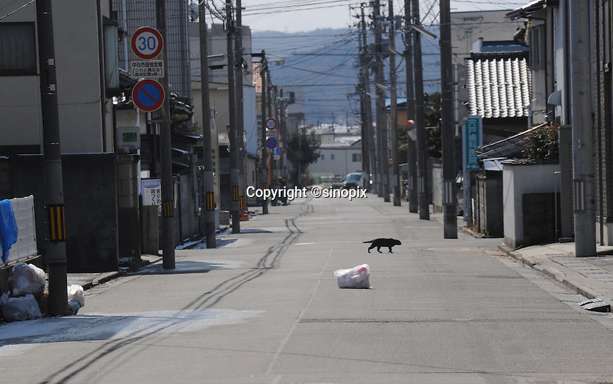 A deserted street in  Fukushima City, 60 km from the.. badly damaged Fukushima Daiichi Nuclear Power Plant,.. the exclusion zone was extended to 80 km.  The streets were largely deserted with people only venturing out for food and water. Many of the cities 350,000 residents had already left and others remained locked indoors worried about radiation levels that were up to 50 times normal. .17. Mar 2011....