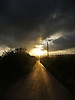 The last rays of the sunset are squeezed between the ground and the clouds throwing golden light down this country lane in Mid-Wales.<br /> <br /> Stock Photo by Paddy Bergin