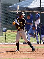 Euribiel Angeles - San Diego Padres  2021 spring training (Bill Mitchell)