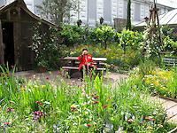 Bonterra California Organic Wine Garden, with Chelsea Pensioner, 2007 Chelsea Flower Show. Native American plants, Trobbiano grape vines