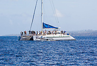 Tourists on a whale watching boat have a close encounter with a humpback whale off the coast of Maui.