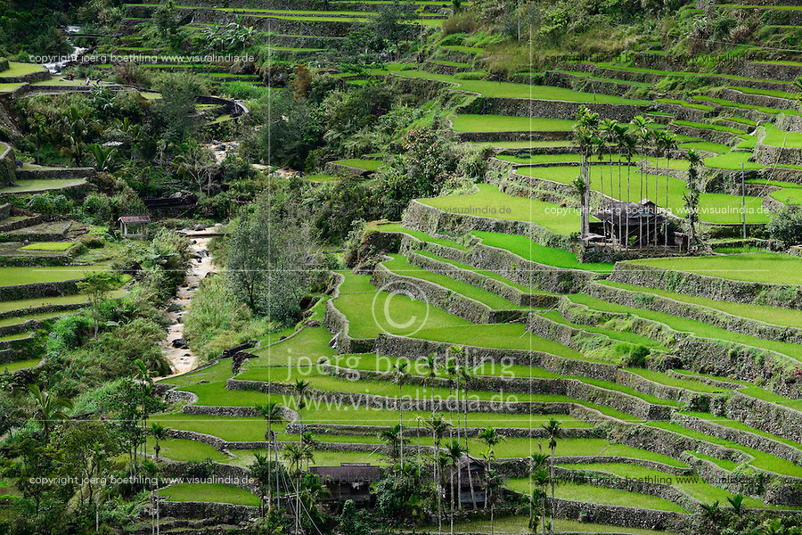 PHILIPPINES, Ifugao Province, Cordilleras, Banaue, Hunduan, rice farming on Hapao rice terraces in mountains, traditional Ifugao House / PHILIPPINEN, Banaue, Hapao Reisterrassen, Reisanbau und Reisfelder in den Bergen bei Hunduan, traditionelles Ifugao Haus