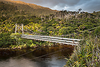 Swingbridge over Kohaihai River on Heaphy Track, Kahurangi National Park, Buller Region, West Coast, New Zealand, NZ