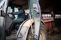 13/02/17 - PICHERANDE - PUY DE DOME - FRANCE - GAEC de l Edelweiss. Paillage de la stabulation - Photo Jerome CHABANNE