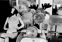 France. Alpes-Maritimes department. Restaurant. A Vespa scooter with a stuffed moose toy. A nakefd woman manikin with a motorbike helmet. Vespa is an Italian brand of scooter manufactured by Piaggio. A stuffed toy is a toy sewn from a textile, and stuffed with a soft material. In North American English they are variously referred to as plush toys, plushies, snuggies, stuffies, snuggled animals or stuffed animals while in British English they are soft toys or cuddly toys. Menton is a commune in the Alpes-Maritimes department in the Provence-Alpes-Côte d'Azur region in southeastern France.31.12.2015 © 2015 Didier Ruef