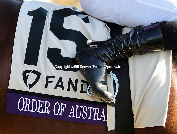 November 7, 2020 : Order of Australia, ridden by Pierre-Charles Boudot, wins the FanDuel Mile presented by PDJF on Breeders' Cup Championship Saturday at Keeneland Race Course in Lexington, Kentucky on November 7, 2020. Bill Denver/Breeders' Cup/Eclipse Sportswire/CSM