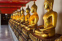 "Bangkok, Thailand.  Buddhas in the South Pavilion of the Wat Pho (Reclining Buddha) Temple Complex.  The Buddhas are demonstrating the ""earth witness"" mudra (gesture)."