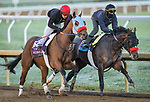 Wildman Jack and Hot Rod Charlie, trained by Doug F. O'Neill, work in preparation for the Breeders' Cup at Keeneland 10.31.20.