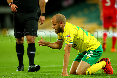 3rd November 2020; Carrow Road, Norwich, Norfolk, England, English Football League Championship Football, Norwich versus Millwall; Teemu Pukki of Norwich City gives the thumbs up to the bench after he goes down injured
