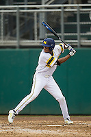 Michigan Wolverines outfielder Johnny Slater (25) at bat during the NCAA baseball game against the Washington Huskies on February 16, 2014 at Bobcat Ballpark in San Marcos, Texas. The game went eight innings, before travel curfew ended the contest in a 7-7 tie. (Andrew Woolley/Four Seam Images)