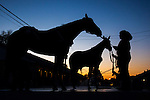 APRIL 28, 2015: Scenes from morning workouts as horses exercise for the Kentucky Derby and Kentucky Oaks at Churchill Downs in Louisville, Kentucky. Jon Durr/ESW/Cal Sport Media
