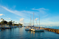 Early Morning at Lahaina Small Boat Harbor, Lahaina, Maui, Hawaii