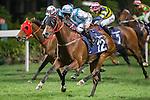 WAN CHAI,HONG KONG-DECEMBER 07: Mutual Joy,ridden by Mirco Demuro,wins the 3rd leg of LONGINES International Jockeys' Championship at Happy Valley Racecourse on December 7,2016 in Wan Chai,Hong Kong (Photo by Kaz Ishida/Eclipse Sportswire/Getty Images)
