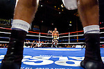 Curtis Stevens (far corner) and  Marcos Primera stare off, while waiting in the neutral corners for the referee to resume their 8 Rds Super Middleweights at the Manhattan Center in N.Y.C. on 11.15.06.&#xA;This was the second time the two fought each other, Primera having won the first fight on a  controversial stoppage by the referee.&#xA;Stevens won the rematch by unanimous decision.<br />