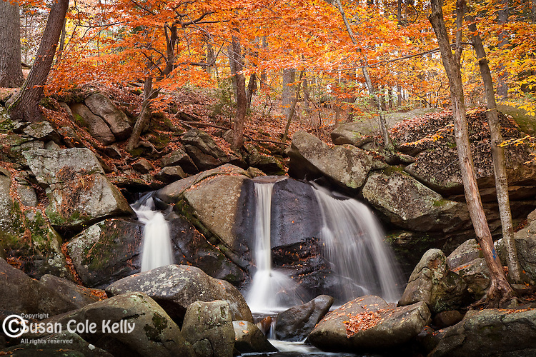 Fall foliage at Trap Falls, Willard Brook State Forest, in Townsend, MA, USA