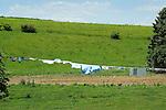 Long clothesline with farm land.