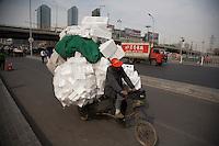 Streeet Scenes near pet spa, Beijing.Contact is Evelyn +86 137 1896 4824