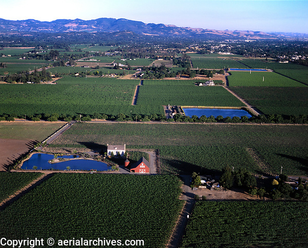 aerial photograph of farming in the California Central Valley, Yolo County, California