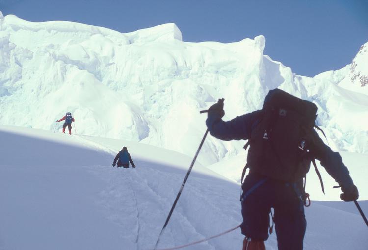 Alaska, Denali National Park, Back country skiers climbing the Southeast Buttress, Denali, Mount McKinley, Don Sheldon Amphitheater, Ruth Glacier,.