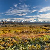 Mt McKinley and the Alaska range mountains, autumn tundra, Denali National Park, Alaska.