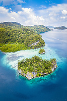 coral reef, tropical islands, Raja Ampat Islands, West Papua, Indonesia, Indo-Pacific Ocean