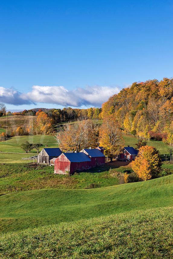 Colorful autumn farm, Reading, Vermont, USA