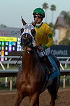 DEL MAR, CA  SEPTEMBER 1: #9 Vasilika, ridden by a celebrating Flavien Prat, return to the connections after winning the John C. Mabee Stakes (Grade ll), on September 1, 2018 at Del Mar Thoroughbred Club in Del Mar, CA.(Photo by Casey Phillips/Eclipse Sportswire/Getty ImagesGetty Images