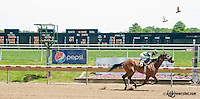 Think I'm Hooked winning at Delaware Park on 6/5/13