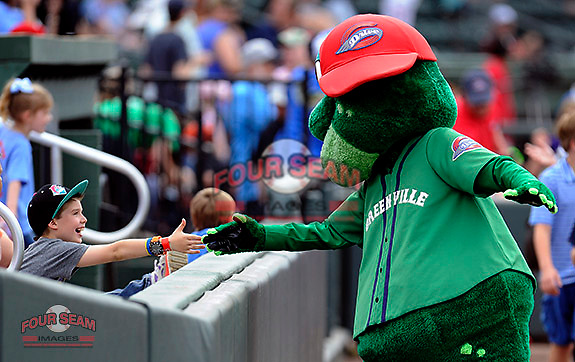 Mascot Reedy Rip'It of the Greenville Drive slaps hands with fans before a game against the Augusta GreenJackets on Sunday, April 12, 2015, at Fluor Field at the West End in Greenville, South Carolina. Augusta won, 2-1. (Tom Priddy/Four Seam Images)