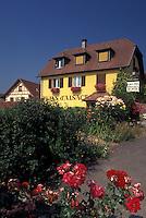 France, Alsace, Haut-Rhin, Europe, wine region, Wine House, in the wine region of Alsace.