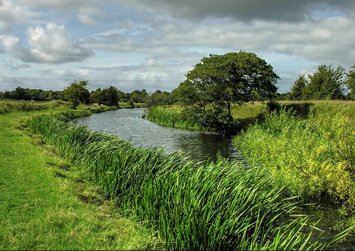 File image of the Nenagh River in Co Tipperary